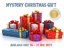 Christmas Gift – 2019