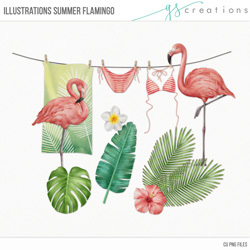 Illustrations Summer Flamingo
